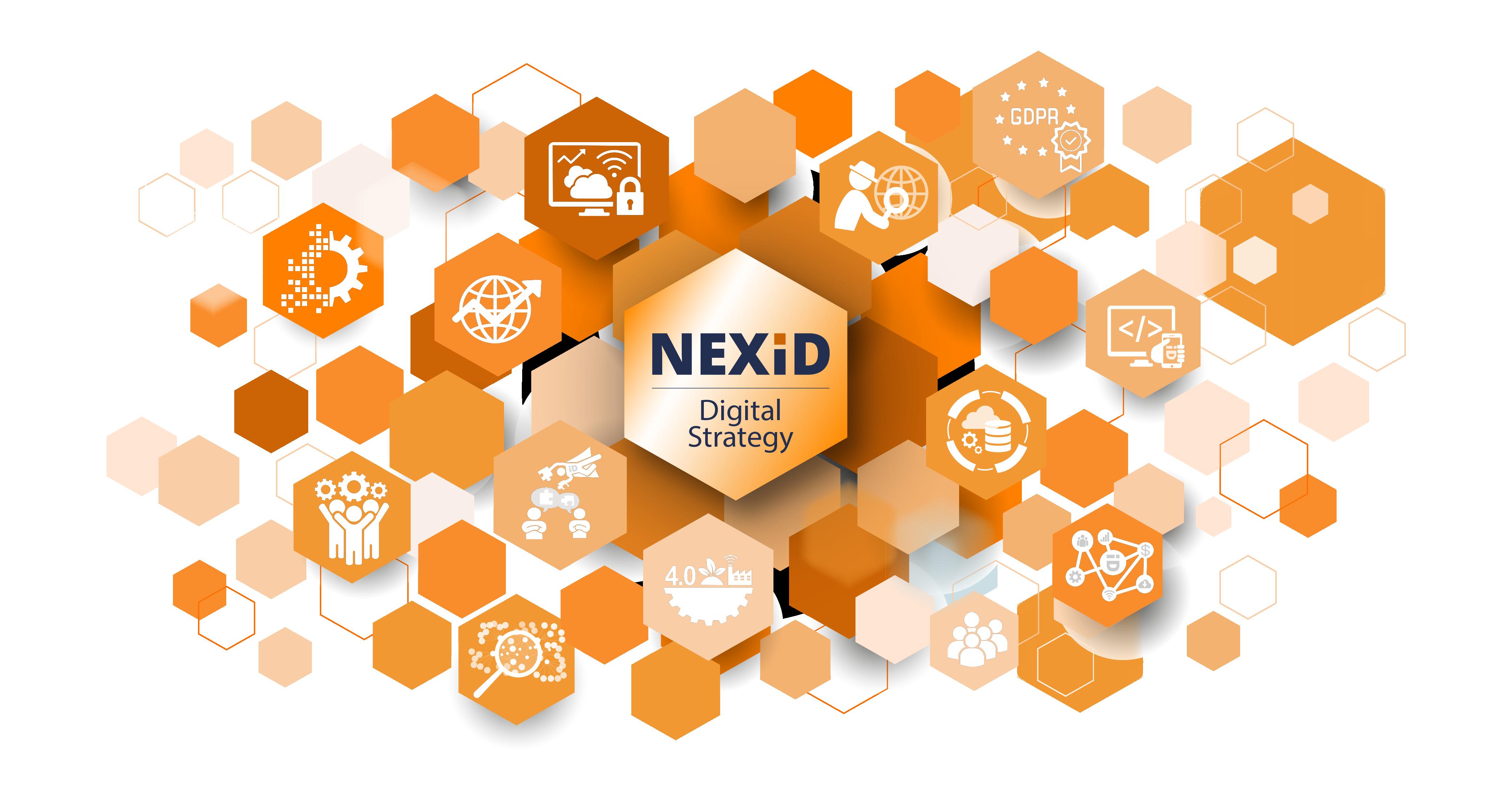Nexid Digital Strategy Infografica